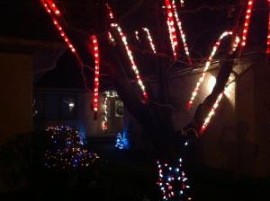 ChristmasLights2013